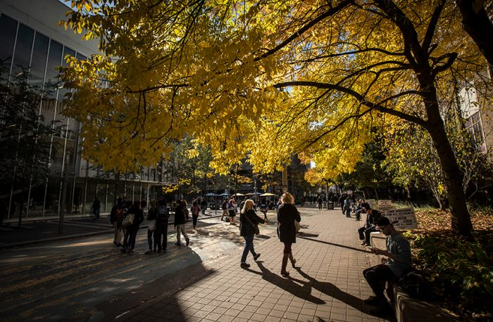 Students walking through Ryerson campus during Fall.