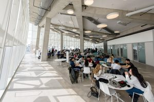 Students studying on the eighth floor of the SLC